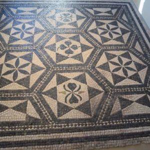 foto5 Mosaico di Concordia Sagittaria